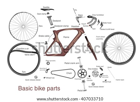 Bicycle Repair Parts Diagram in addition Ct110 Wiring Diagram further Tire Rim Diagram moreover Car Bike Accident further Bicycle Spoke Tension Adjustment. on bicycle tire diagram