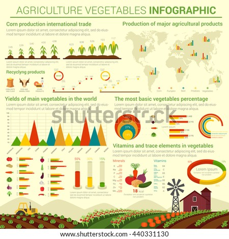 Infographic or infocharts template or layout for agriculture vegetables and its distributing over world map. Graphs and bar and circle, conus and linear, pie charts over field that has cabbage - stock vector