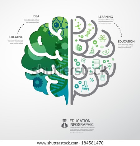 infographic Template brain education and science concept vector illustration  - stock vector