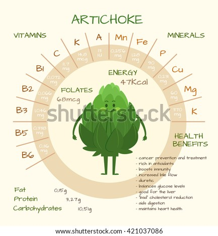 Infographics about nutrients artichoke vector illustration stock infographics about nutrients in artichoke vector illustration of artichoke vitamins vegetables healthy ccuart Choice Image