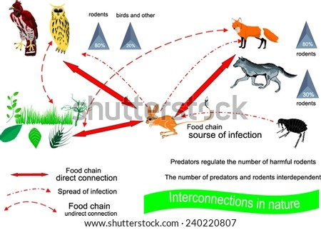 low predation relationship