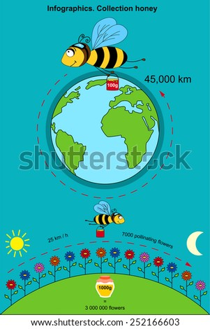 Infographics with the poster containing information on that how many a bee flies by kilometers to collect 100 grams of honey. With what speed flies, how many flowers pollinate.