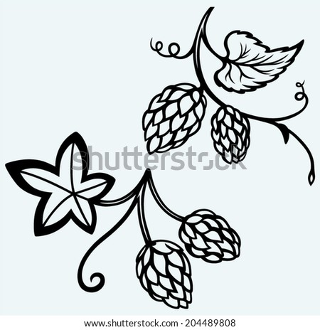 Ingredients for beer. Hops. Image isolated on blue background - stock vector
