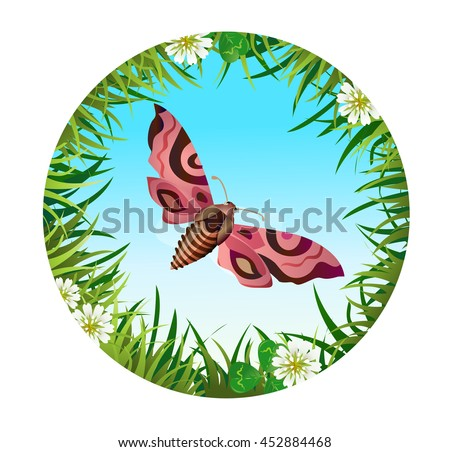 Insect and summer nature icon. Butterfly roisterer on the background of the sky in a clearing in a circle around flowers
