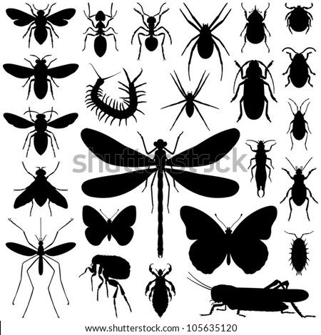 Insect collection - vector silhouette - stock vector