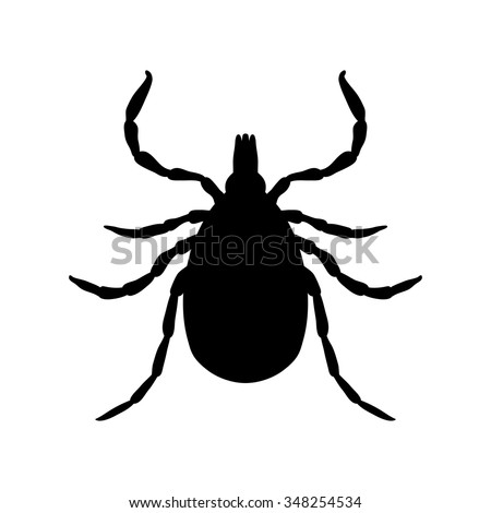 insect silhouette.Tick parasite. Sketch of Tick. Mite. Tick isolated on white background. Tick Design for coloring book.  hand-drawn Tick. Vector illustration