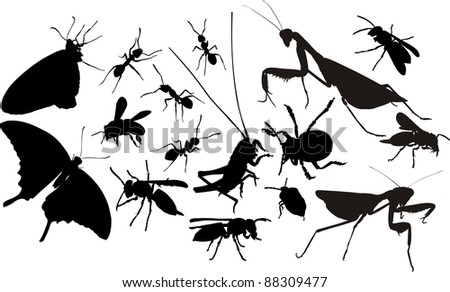 insects silhouettes - stock vector