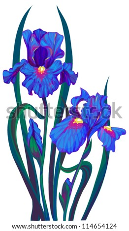 iris flower - stock vector