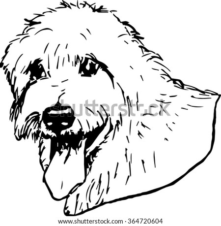 Irish Wolfhound dog vector illustration. Hand drawn large dog portrait. Purebred dog illustration. Sketch of irish wolfhound.
