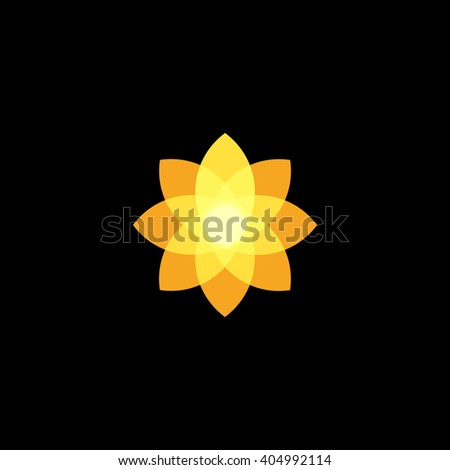 daffodil flower stock images, royalty-free images & vectors
