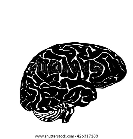 isolated brain silhouette on white background - stock vector