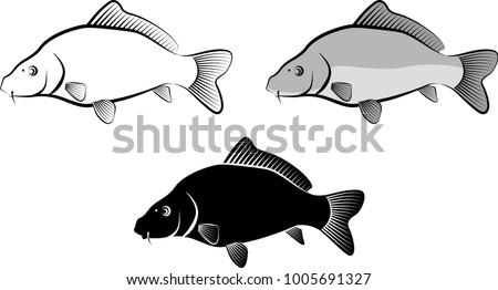 isolated carp fish - clip art illustration and line art
