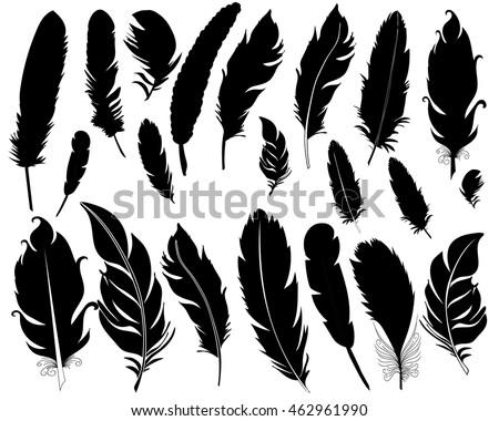 Feather bird silhouette