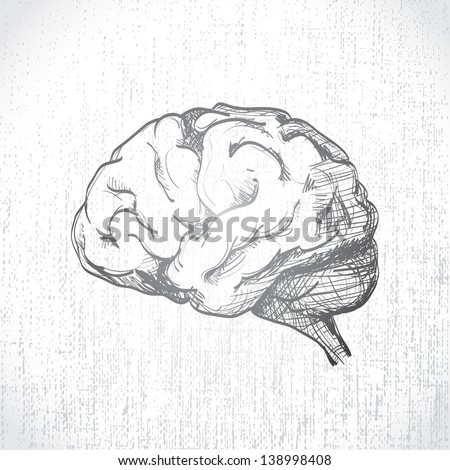Isolated human brain sketch - illustration - stock vector