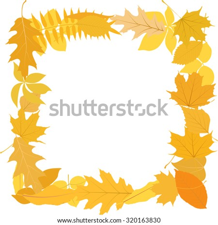 isolated leaves frame - stock vector