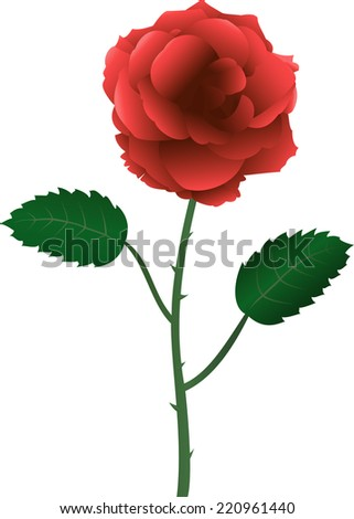 Isolated red gradient rose with thorn over white - stock vector