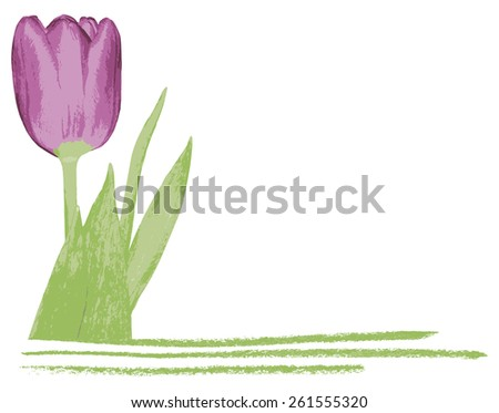isolated romantic background with tulip and frame from bottom, with place for your text