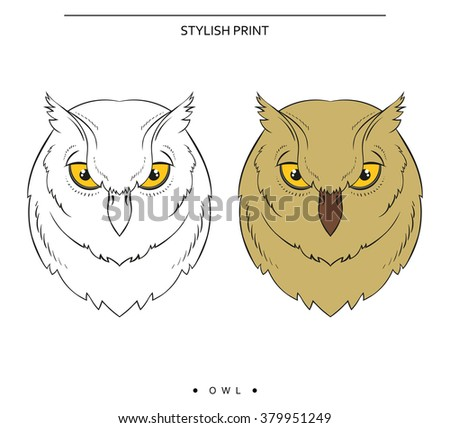 isolated set of sketch of owls color and monochrome owl for design print for - Pictures Of Owls To Color