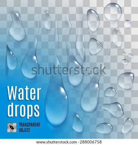 Isolated set of transparent variety water drops - stock vector
