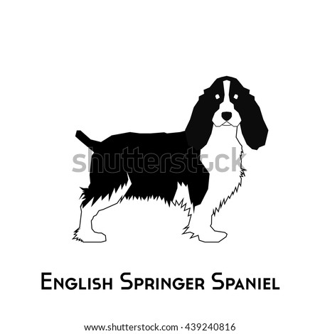 isolated silhouette of a english springer spaniel on a white background