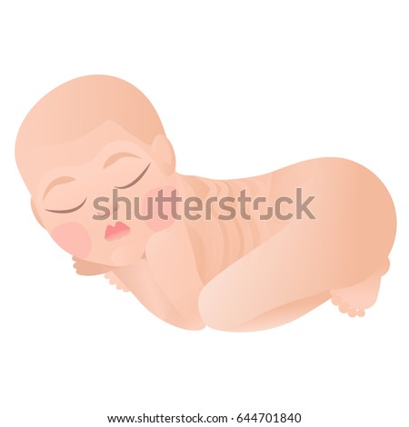 Isolated vector sleeping beautiful baby on white background