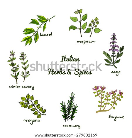 herbal medicine topic