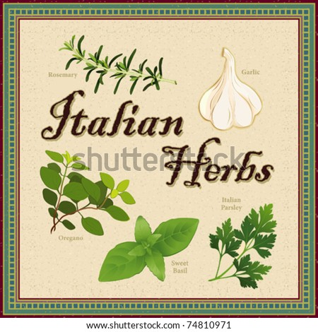Italian Herbs. Cooking favorites: Rosemary, Garlic, Italian Oregano, Sweet Basil, Italian Flat Leaf Parsley, Textured background, antique mosaic frame. EPS8 compatible. See more herbs in this series.