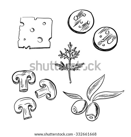 Italian pizza topping ingredients sketch icons with slices of cheese, salami sausage, mushroom, olive fruits and fresh dill - stock vector