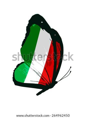 Italy flag butterfly - vector - stock vector