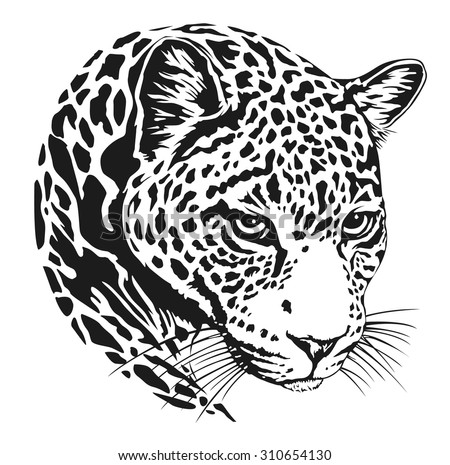Animal Stencil Design likewise Desenhos De Leopardos Para Imprimir E Colorir as well Afrikanischer Gepard together with Masker Jachtluipaard besides Cats4. on cheetahs