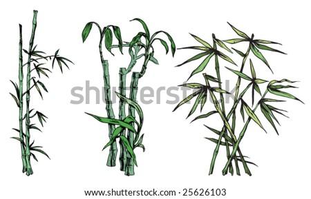 japanese bamboo - stock vector