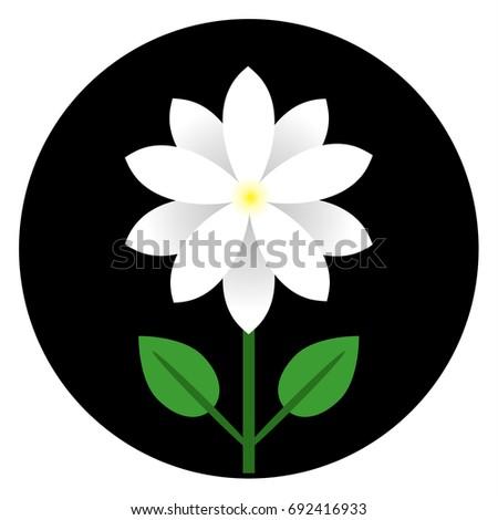 Jasmine Flower Icon Vector Illustration Symbol Stock Vector Hd