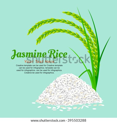 Jasmine Rice, illustration design.