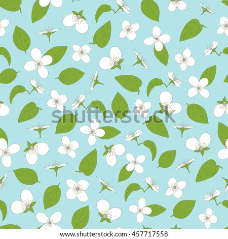 Jasmine seamless pattern. Hand-drawn flowers and leaves. White on blue. The natural background. Vector illustration