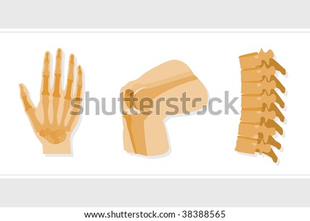 Joints - stock vector