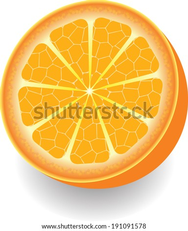 Juicy and ripe orange isolated on a white background closeup - stock vector