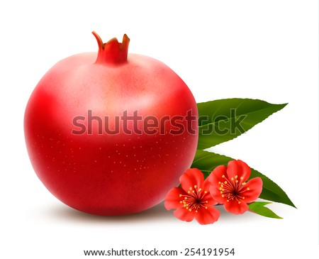 Juicy pomegranate with leaves. Vector - stock vector