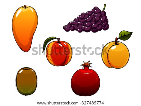 Juicy sweet orange mango, peach, apricot, purple grape, green kiwi and red pomegranate fruits for agriculture, harvest or healthy nutrition themes concept - stock vector