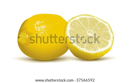 juicy vector lemons - stock vector