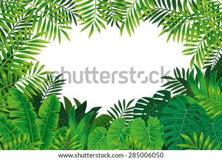 Jungle background - stock vector