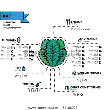 Kale - nutritional information. Healthy diet. Simple flat infographics with data on the quantities of vitamins, minerals, energy and more.