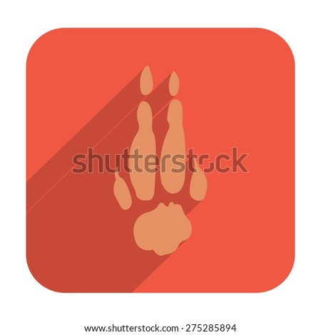 Kangaroo Paw Stock Images, Royalty-Free Images & Vectors ...