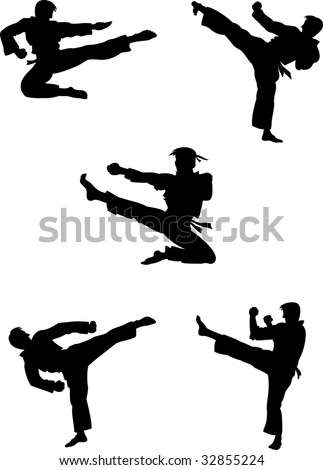 Karate fighters silhouettes - stock vector
