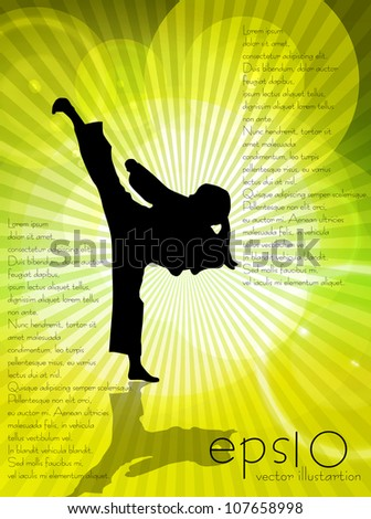Karate illustration - stock vector