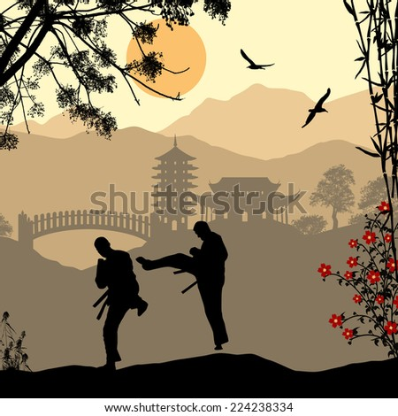 Karate in the beautiful asian landscape, vector illustration - stock vector