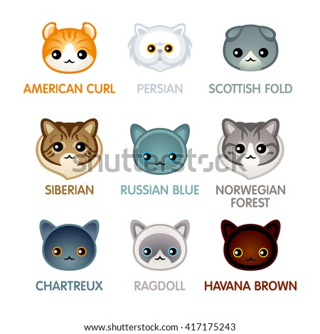 Kawaii cat breed head icons, set II