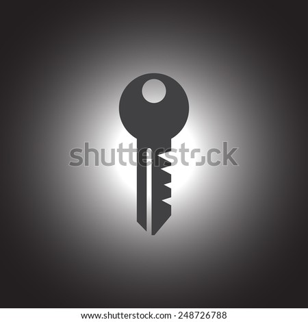 key vector icon