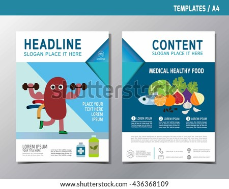 Kidney Infographic Brochure Flyer Template A4 Size Stock Vector