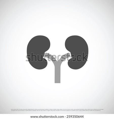 Kidneys Icon design - stock vector