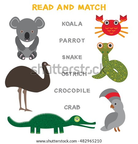 Singular And Plurals Worksheets For Kids Cute Animals Set Echidna Koala Platypus Stock Vector   Math Decimal Worksheets Excel with 1st Grade History Worksheets Kids Words Learning Game Worksheet Read And Match Funny Animals Koala  Ostrich Parrot Crab Crocodile Worksheets Work Math Excel